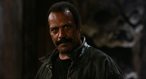fred-williamson
